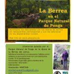 Cartel berrea 2017 Asturias